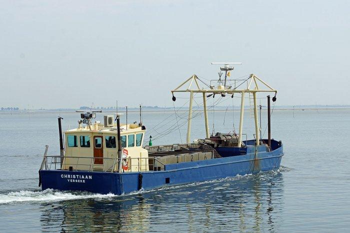 Ein weiterer Muschelfischer verlässt den Hafen