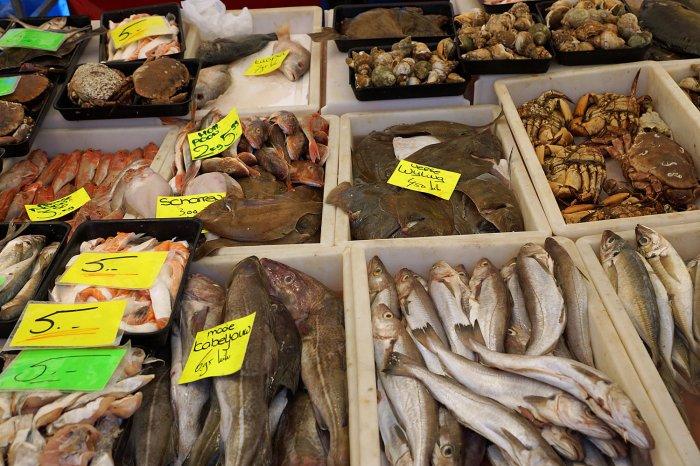Fischstand auf dem Rotterdamer Markt