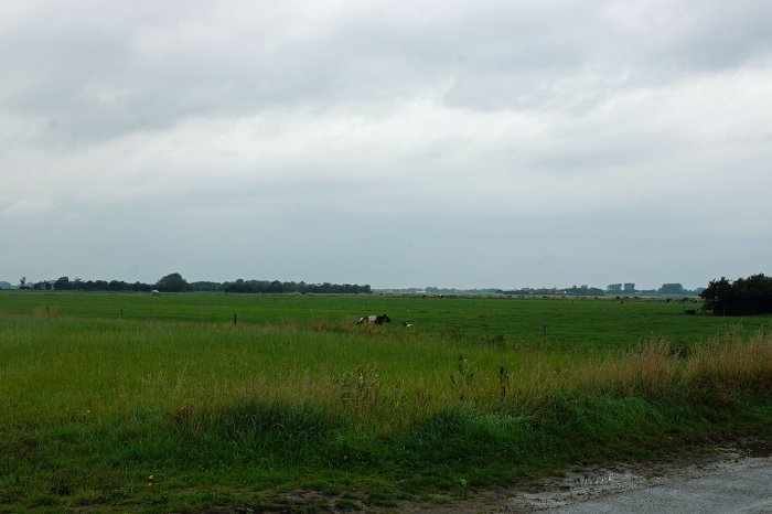 Weide am Bauernhof Mariekerke